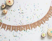 Birthday Banner, Adult Humor, Swear Words, Happy Fucking Birthday Small Penant Banner