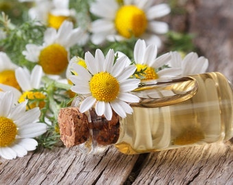 Roman Chamomile Essential Oil (100% Pure)