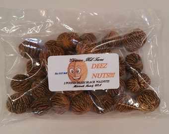 DEEZ NUTS!! Fresh Black Walnuts by Chrisman Mill Farms 1 Lb Great Gag Gift... And tasty too!