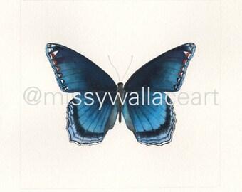 Butterfly #16 (Original)