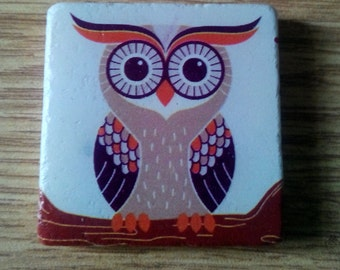 Cute Owl Marble Magnet