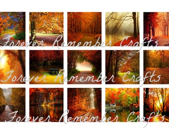 INSTANT DOWNLOAD Fall & Autumn Backgrounds 1 Inch Square Image Sheet *Digital Image* 4x6 Sheet With 15 Images
