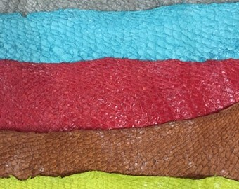 Nile Perch Fish Leather