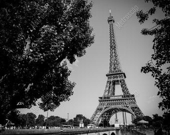 Black and White, Paris Photography, Paris France Photography , Fine Art Photography, Paris Pictures, Eiffel Tower, Rive Droite
