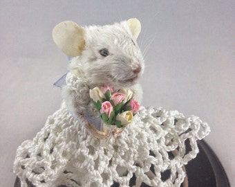 Sunday Best Taxidermy Mouse