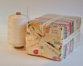 Fresh Air by American Jane  of Moda destash quilter cotton Out of Print OOP Hard to find fat quarter  bundle 40 pieces