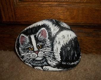 Tuxedo Kitty Rock