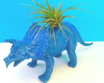 Upcycled Blue Dinosaur Air Planter, Air Plant, Dinosaur Air Planter, Upcycled, Repurposed, Low Care Planter, Made By Mod.