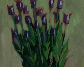 060 - I Love Lavender