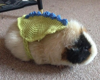 Crochet Guinea Pig Rabbit Tortoise Cozy Jumper Sweater Dinosaur Pet Costume