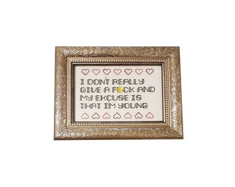 Drake I Don't Give a F*ck framed cross stitch