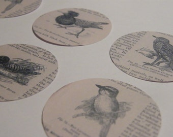 30 Victorian Birds - Card Disc Embellishments for Papercrafts/Cardmaking