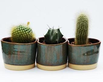 Three Planter Pot Set