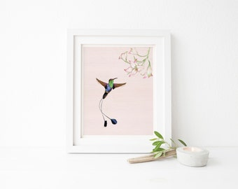 Hummingbird print, Hummingbird art, Hummingbird Wall Art, Printable art, Nature print, Bird print, Gallery wall print, Illustration print