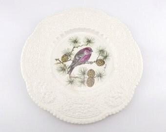 Royal Cauldon Pine Grosbeak Plate - Decorative Bird Plate - Bristol Ironstone - Wall Plate - Henry A. Pausch - Housewarming Gift