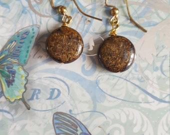 Round Bronzite earrings