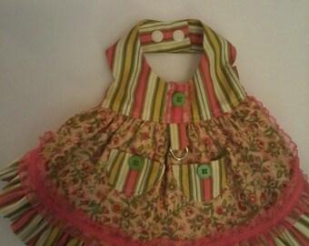 Flowers & Stripes Dog dress