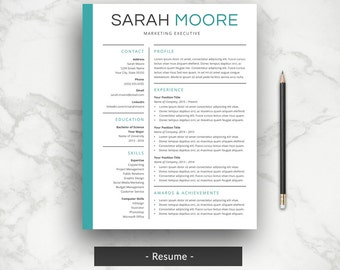 professional resume cover letter cv template simple resume template professional cv - Template For Professional Resume