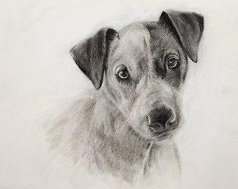 Custom Hand Drawn Portrait, Pencil Sketch From Your Picture,  Hand drawn Personal Portrait,  Custom Portait