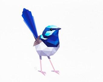 Fairy wren, Blue wren, Superb wren, Australian bird wildlife, Instant wall art, best Printable  art, Wren illustration, Australian wall art