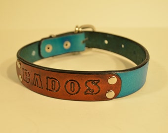 Leather Dog Collar with Name Badge - 23 Color Options