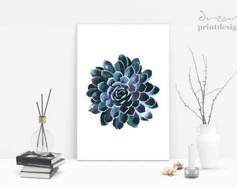 Printable Succulent Art, Succulent Prints, Succulent Poster, Floral Art Print, Botanical Print, Tropical Art