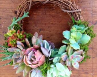 """6.6 """"Succulent Wreath"""