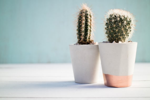 Concrete and Copper/Gold Mini Succulent and Cactus Pots |  Concrete Alphabet | Handmade | Gift | Plant | Indoor | Outdoor | Minimalist  | Br