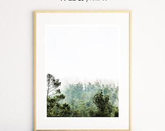 Forest Print, Tree Wall Art, Scandinavian Art, Modern Prints, Green Wall Art, Modern Minimalist, Photo Prints