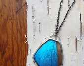 Blue Morpho Butterfly Pendant Necklace - full butterfly hindwing, iridescent blue shimmer, black chain, unusual jewelry