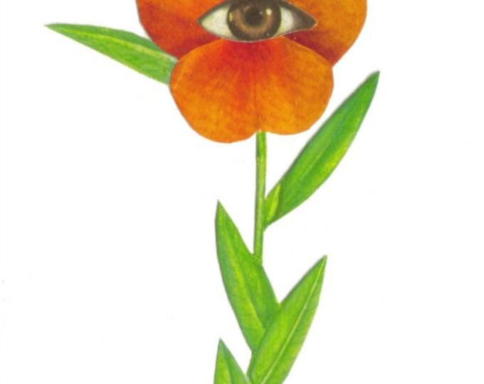 Hybrid Flower Art, Strange Floral Artwork, Surreal Collage