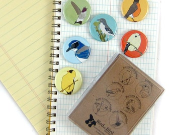 Songbird Magnets--Western Backyard Birds--Set of 6