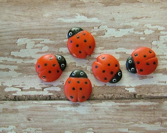 Lady Bug Button set of 5
