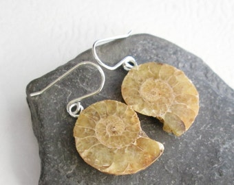 Brown Ammonite Earrings, Cephalopod Fossil Stone, Sterling Silver Science Jewelry for Geeks