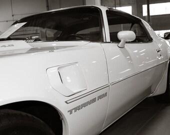 1981 Pontiac Firebird Trans Am Car Photography, Automotive, Auto Dealer, Muscle, Sports Car, Mechanic, Boys Room, Garage, Dealership Art