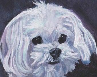 "Maltese dog portrait art Canvas PRINT of LAShepard painting 8x8"""