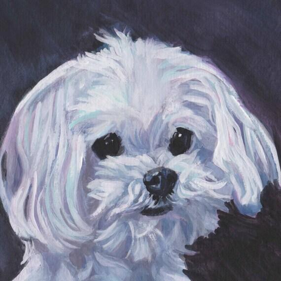Maltese Dog Portrait Art Canvas Print Of Lashepard Painting