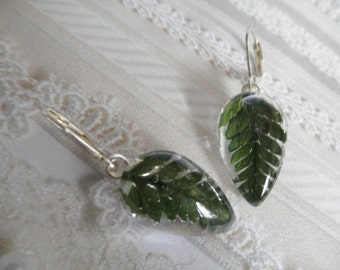Beautiful, Lush Green Feather Ferns Glass Teardrop Leverback Earrings-Nature's Wearable Art-Minimalistic, Earthy,Symbolizes Perseverance