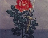 Roses & Razorblades Perfume Oil - Fine Bulgarian Roses and Hot Forged Steel
