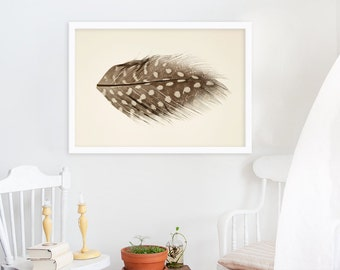 Feather Print // Modern Home Decor // Large Scale Photography // Feather Photography Still Life // Natural Colors // Neutral Colors
