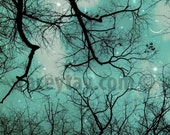 Fantasy Tree Prints, Blue Starry Sky Prints, Moon Stars Prints, Surreal Blue Nature Photography Baby Nursery Decor Large Wall Art Prints