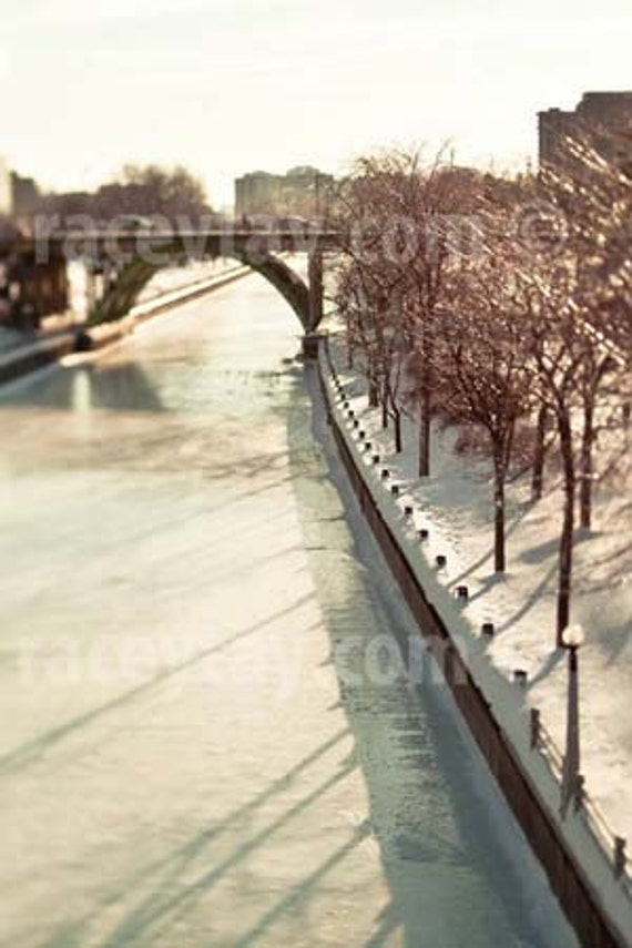Ottawa Photography, Rideau Canal, Winter, Travel, Gold, Blue, White, Neutral, Cool Office Decor