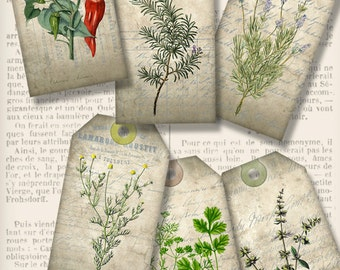 Herbs Tags printable gift tags paper crafting craft art hobby journal pastel - instant download digital Collage Sheet - VDTAVI1347