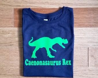 Dinosaur birthday shirt, T rex dinosaur shirt, personalized dinosaur shirt for kids, dinosaur birthday shirt, gift for kids