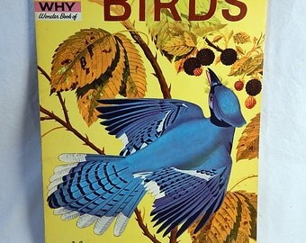 BIRDS How and Why Wonder Book 1960 Vintage Children's Educational Book School