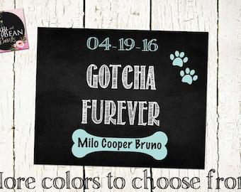 Doggie Gotcha Day- Gotcha Furever Sign- Pet Adoption Sign -Dog Adoption Sign-Happy Gotcha Day-Dog Photo Prop-Dog Adoption Photo Prop