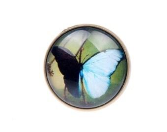 RING butterfly (2020B)