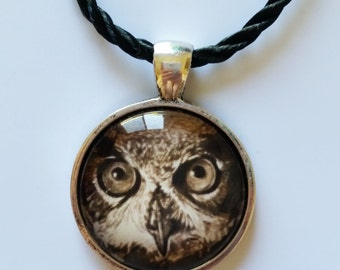 OWL Necklace + Free Shipping Worldwide ~ Owl Necklace , Owl Jewelry, Owl Pendant, Owl Art, Owl Drawing, Bird Necklace