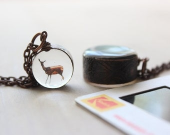Deer with American Flag, Kodachrome slide necklace set