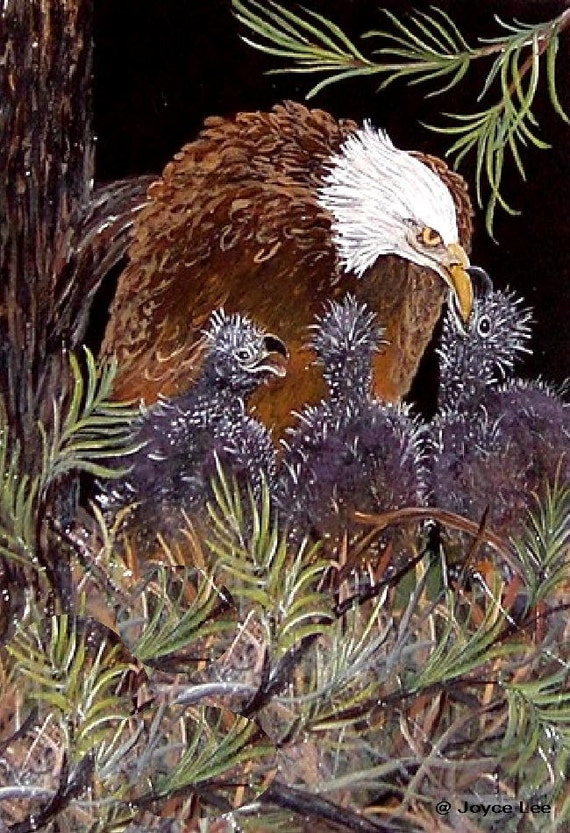 Momma And Babies  16 X 20 Giclee Eagle Print  From Original Acrylic Painting